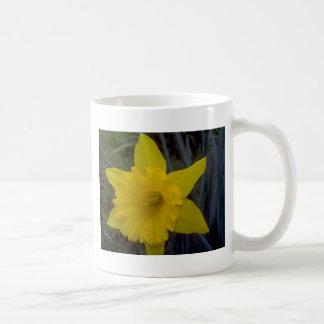 Quick Brown Fox Designs Mug