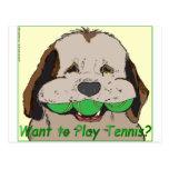 ¿Quiera jugar a tenis? Postal