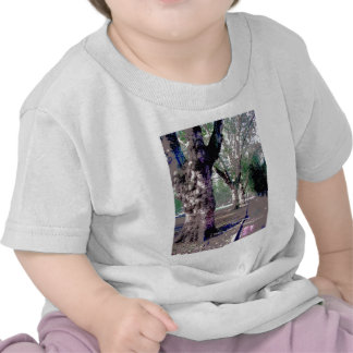 ¡Quiero caminar con Abraham-Catetos! Camisetas