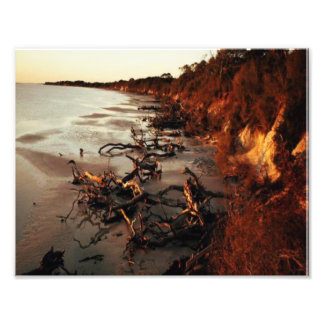 Quiet Beach Photo Print