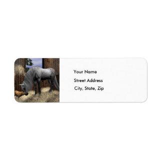 Quiet Companions - Address Labels