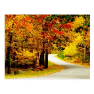 Quiet Country Lane in Autumn Postcard