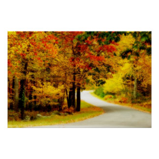 Quiet Country Lane in Autumn Poster