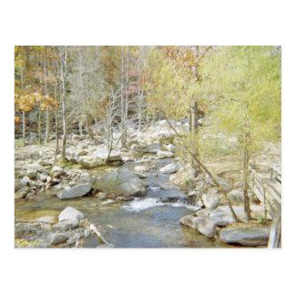 Quiet Getaway At The Creek Postcard