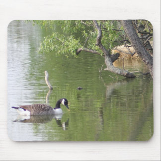 Quiet Moment Mouse Pad
