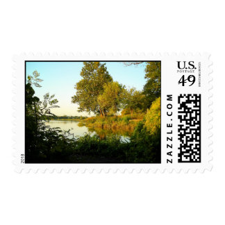 Quiet Morning Postage Stamp