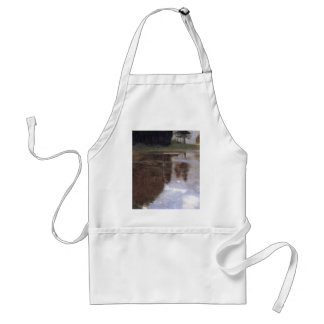 Quiet pond in the park of Appeal Adult Apron