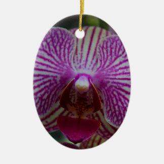 Quiet Radiance Ceramic Ornament