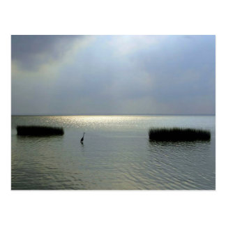 Quiet Sound, Outer Banks Postcard