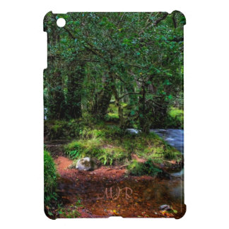 Quietly Flows The River - Dartmoor National Park iPad Mini Covers