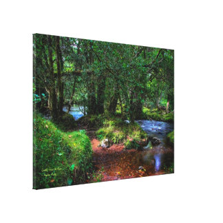 Quietly Flows The River, Spitchwick, Dartmoor Canvas Print