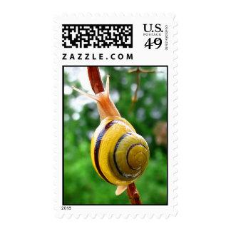 Quietude Stamps