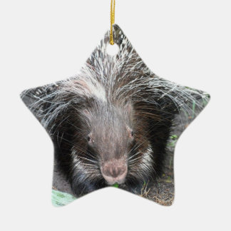 Quilled Porcupine  Ornament