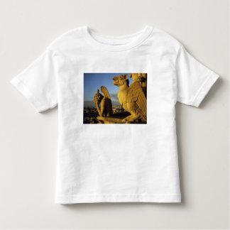 Quimera, con referencia a dama Cathedral, París, Playera De Bebé