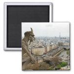 Quimera del Notre Dame de Paris Imán Cuadrado