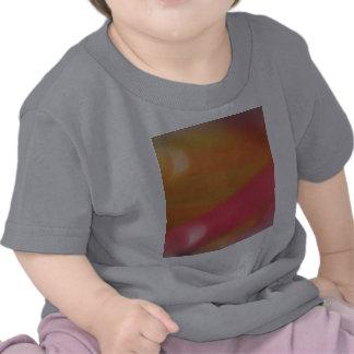 Quimera del tecnicolor camiseta