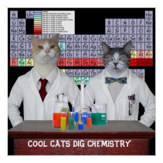 Química fresca del empuje de los gatos póster