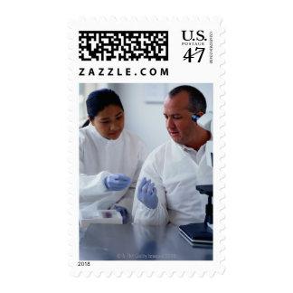 Químicos que miran una diapositiva de cristal timbres postales