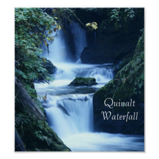 Quinalt Waterfall Poster