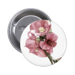 Quince Floral Art Pins