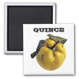 Quince - (Fridge Magnet Square)