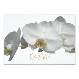 Quinceanera RSVP Guest Reply White Orchids Card