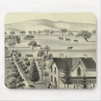 Quinn residence mouse pad