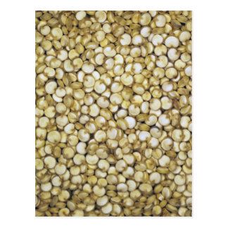 Quinoa grains macro photo postcard