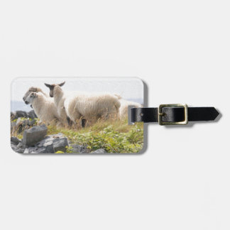 Quirky Designs - Sheep in a field Tag For Bags