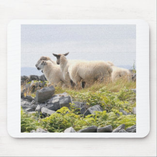 Quirky Designs - Sheep in a field Mouse Pad
