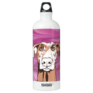 Quirky dog water bottle