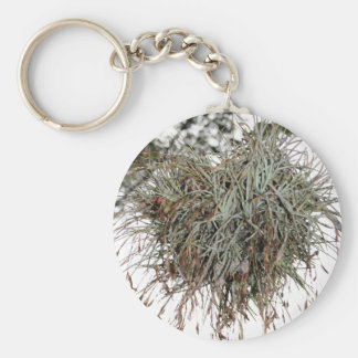 Quirky Nest Keychain