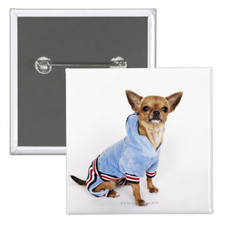 Quirky portrait of a Teacup Chihuahua 2 Button