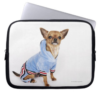 Quirky portrait of a Teacup Chihuahua 2 Computer Sleeves