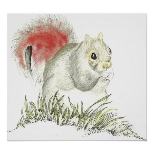 Quirky Squirrel Poster