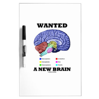 Quiso un nuevo cerebro (la actitud anatómica del pizarras blancas de calidad