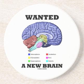 Quiso un nuevo cerebro (la actitud anatómica del posavasos de arenisca