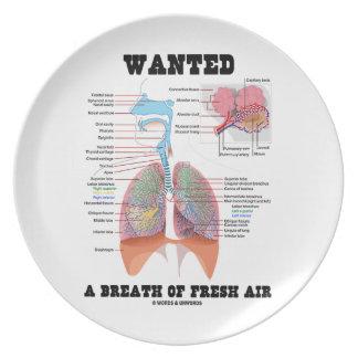 Quiso un respirar aire puro (el sistema plato