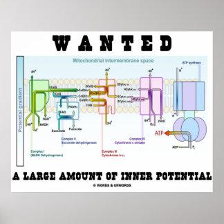Quiso una gran cantidad de potencial interno póster