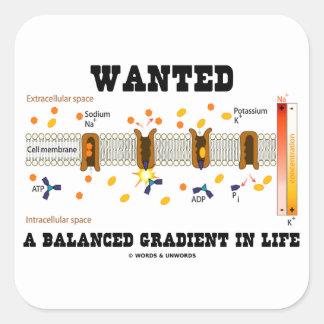 Quiso una pendiente equilibrada en la vida (la pegatina cuadrada