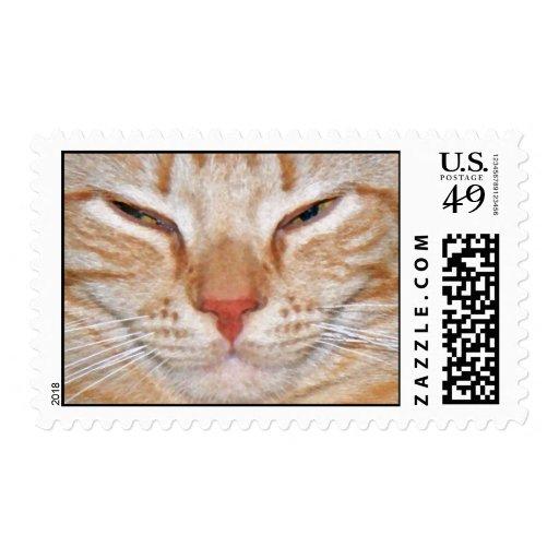 Quite Frankeh Postage Stamp