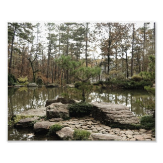 Quite Pond Photograph