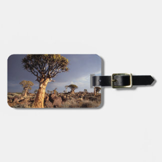 Quiver Trees (Aloe Dichotoma) Bag Tag