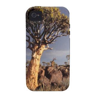 Quiver Trees (Aloe Dichotoma) iPhone 4/4S Case