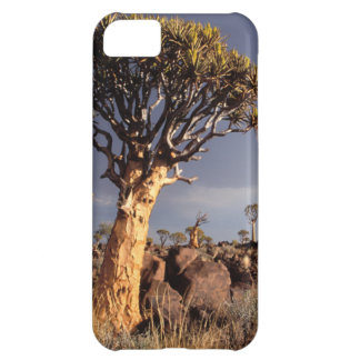 Quiver Trees (Aloe Dichotoma) Cover For iPhone 5C