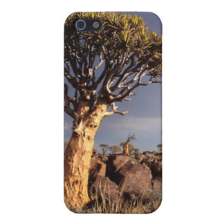 Quiver Trees (Aloe Dichotoma) Cover For iPhone SE/5/5s