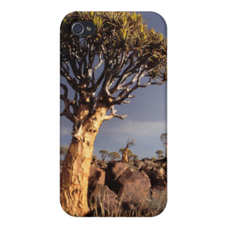Quiver Trees (Aloe Dichotoma) iPhone 4 Covers