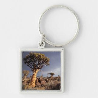 Quiver Trees (Aloe Dichotoma) Key Chain