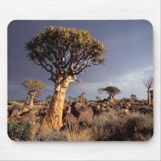 Quiver Trees (Aloe Dichotoma) Mouse Pad
