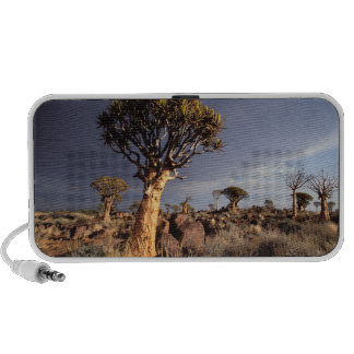 Quiver Trees (Aloe Dichotoma) Notebook Speakers
